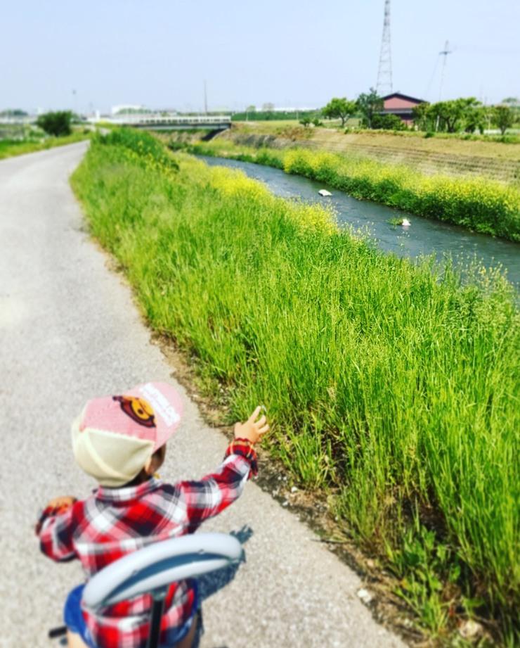 せとと散歩.jpg