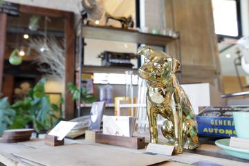 必見滋賀の新たなデザイン設計事務所で「リノベーション」